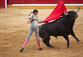 Passess of the bullfighter Israel Lancho — Foto de Stock