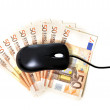 Computer mouse on banknotes — Stock Photo #39021593