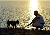 Woman and dog Silhouette summer beach sunset at the sea playing together — Stock Photo