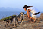 Woman and dogs summer beach scene at the sea playing together — Stock Photo