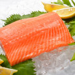 Fresh salmon  — Stockfoto