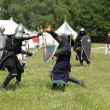Medieval European knights fighting — Stock Photo #30370851