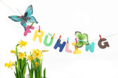 Spring text with flowers — Stockfoto