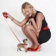 Woman and puppy chihuahua — Stock Photo