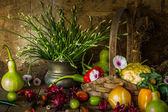 Still life  Vegetables, Herbs and Fruit. — 图库照片