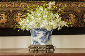 Orchid in  Chinese pattern  vase — Stockfoto
