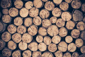 A pile of cut wood stump log texture — Stock Photo