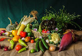 Still life  Vegetables, Herbs and Fruit. — Стоковое фото