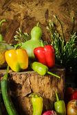Frutta, erbe e verdure di natura morta. — Foto Stock