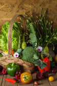 Still life  Vegetables, Herbs and Fruit. — Stock Photo