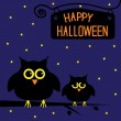 Stock Vector: Happy Halloween cute owls card. Starry night.