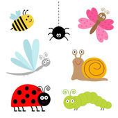 Cute cartoon insect set. — Stock Vector