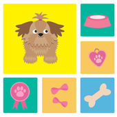 Dog Shih Tzu and dog stuff — Stock Vector