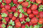 çilek, meyve kırmızı — Stok fotoğraf