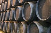 Barriles de vino en bodega — Foto de Stock
