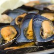 Foto Stock: Mussels in foreground