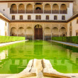 Landscape in Alhambra, courtyard with green water — Stock Photo