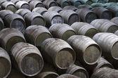 Barrels in cellar — Stock Photo