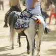Horse Fair, Jerez de la frontera — Stock Photo