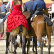 Horse Fair, Jerez de la frontera — Stock Photo #42285153