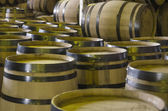 Barrels of whiskey — 图库照片