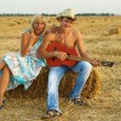 A pair of lovers in the hay with guitar — Stock Photo