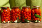Canned tomatos — Stock Photo