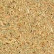 Sawdust texture — Stock Photo #31315049
