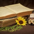 Stock Photo: Old Book Selective focus