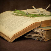 Old Book Selective focus — Stock Photo