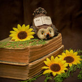 Old Book Selective focus — Stockfoto