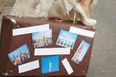 Noiva com bagagem na estrada — Fotografia Stock