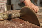 Circular saw cuts wood — Stock Photo