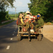 Stock Photo: Farmer move by Cong Nong (farm vehicle) on road under golden light