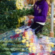 Stock Photo: Success flower harvest of Vietnamese farmer for vietnam tet