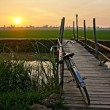 Bicycle on wooden fence of bridge at sunset — Stock Photo