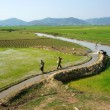 Stock Photo: Farmer pump water to vast rice field