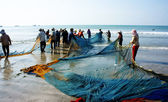 Group of fisherman pull fish net — Stock Photo