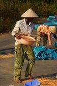 Ludzie suchej kukurydzy dobry plon — Zdjęcie stockowe