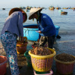 Seafood market on beach — Stock Photo #41653845
