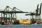 Verladung container im hafen, seeverkehr — Stockfoto