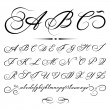 Vector hand drawn calligraphic Alphabet based on calligraphy masters of the 18th century — Stock Vector