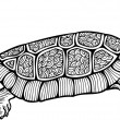 Turtle, graphic style, hand drawn, vector illustration — Stock Vector #30122185
