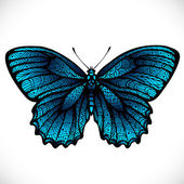 Beautiful shiny blue butterfly, vector — Stock Vector