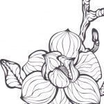 Vector fantasy flower — Stock Vector