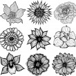 Set of 9 different hand drawn flowers, black and white isolated vector illustration — Stockvektor