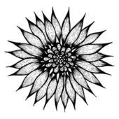 Hand drawn flower — Stock Vector