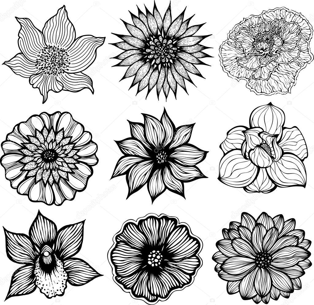 Black Tree And Flower Illustrations 113