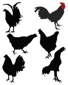 Chickens — Stock Vector