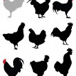 Roosters and hens — Stock Vector